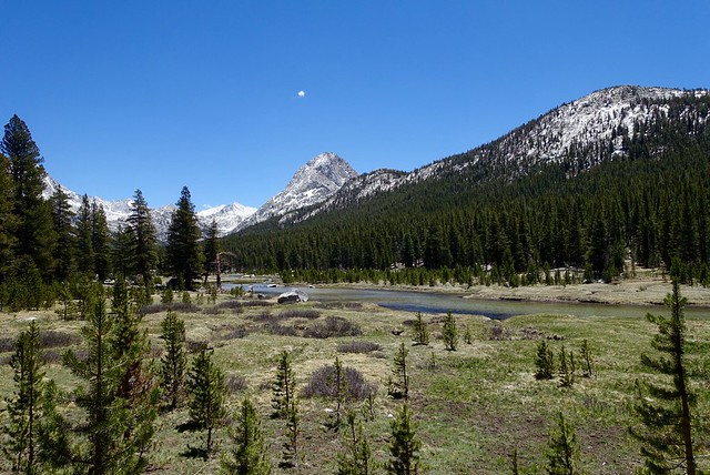 Colby Meadow in Evolution Valley, m847