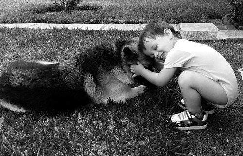 boy dog blackwhite germansheperd