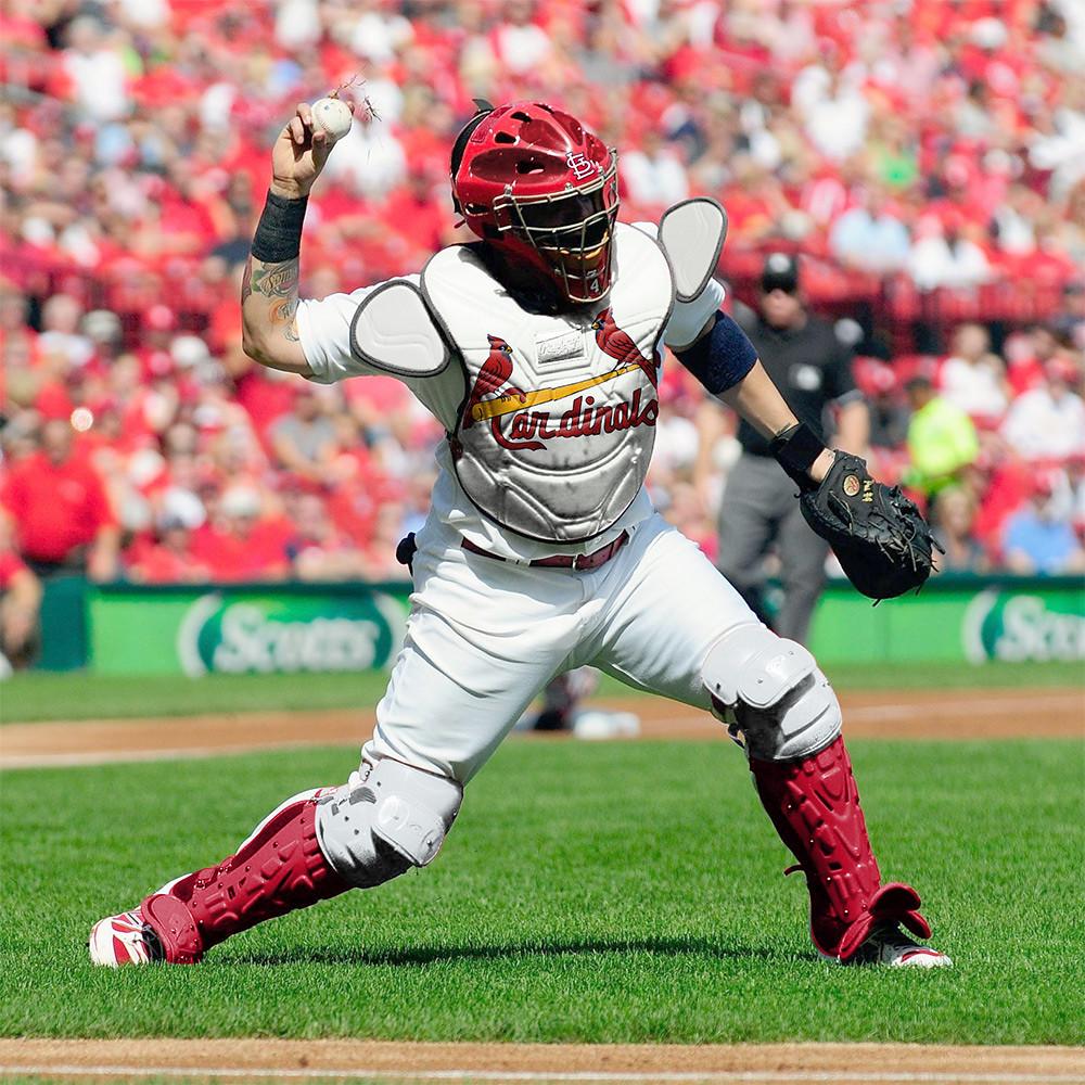 Baseball catchers gear baseball catchers gear set -  Catcher Wearing Team Themed Gear