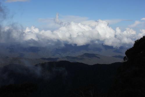 travel nature landscape scenery newengland australia nsw dorrigo