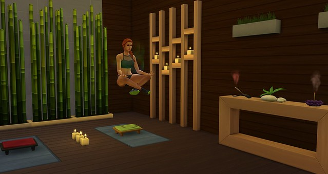 Sims 4 Spa Day Game Guide