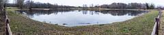 The Sunday Pond