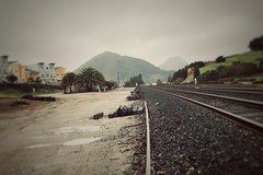 train tracks [Day 2942]