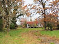 House near Gela, North Carolina
