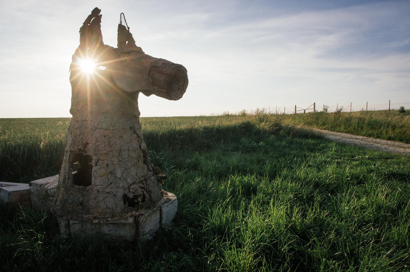 Randonner en Argonne - Balades en âne - Les expos