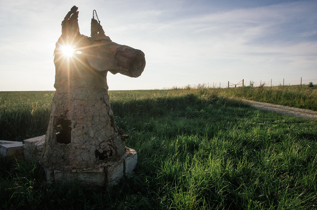 Randonner en argone - Balade en âne - Les expos