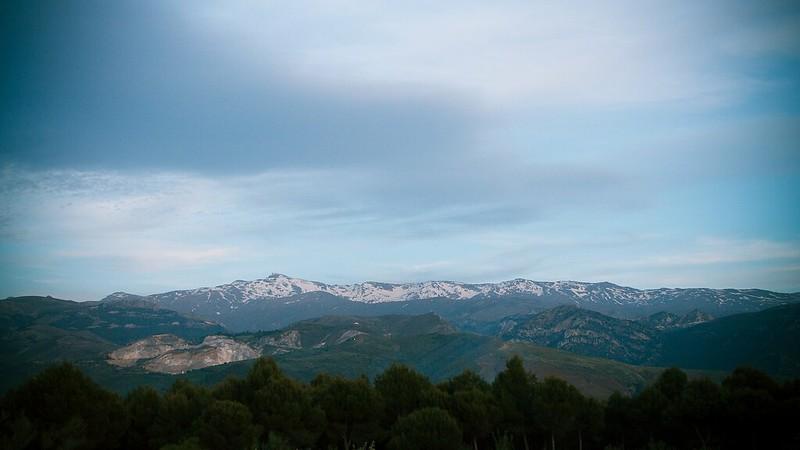 IMG_5431 - Verde