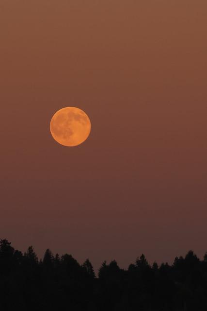 La misma luna flickr photo sharing for Mural la misma luna