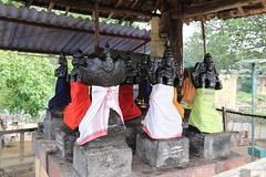 Shanmuga river Temple Complex