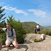 We made it! Beehive summit by daveynin