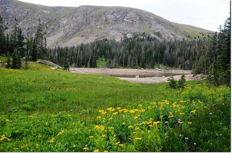 Jasper Lake 4