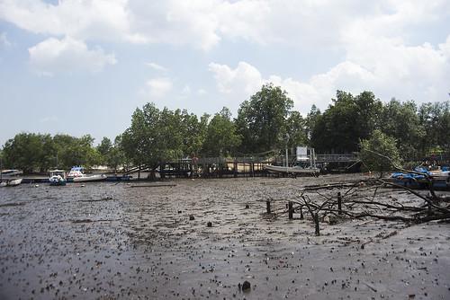Kampung at Seletar mangroves