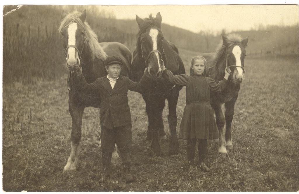 Real Photo Postcard: A Sister, A Brother, Three Horses [Reposted --- Has Love, Wants More]