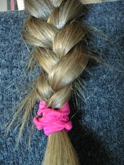 french braid(0.0), brown hair(0.0), hair coloring(0.0), hairstyle(1.0), hair(1.0), braid(1.0),