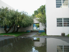 Puddle and portal