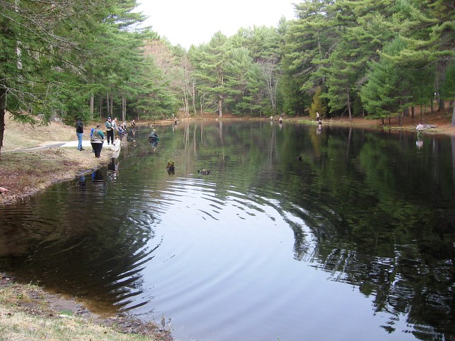 Archery pond at bear brook state park flickr photo for Plenty of fish nh