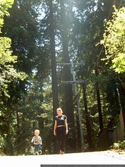walking down sequoia drive   dscf8636