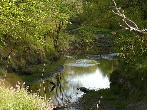 saltcreek wildernesspark flowrbx specland forthesaltlickr
