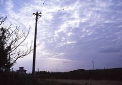 沖縄写真日記六日目