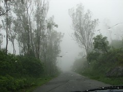 snow(0.0), fog(1.0), rain(1.0), drizzle(1.0), haze(1.0), morning(1.0), mist(1.0),