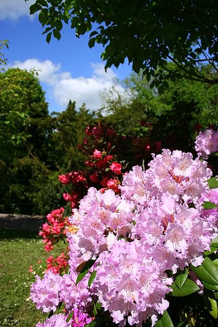 Blarney Castle Gardens - Ireland