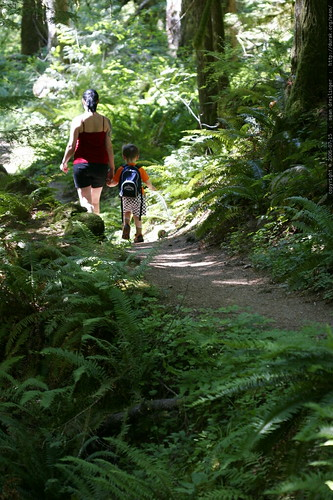oregon, 2006-07-15, old salmon river trail,… _MG_8651