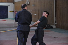 hapkido, iaidå, sports, martial arts, chinese martial arts,