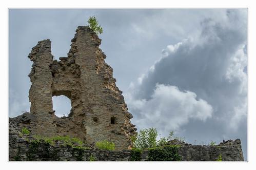 Ruines du Morimont