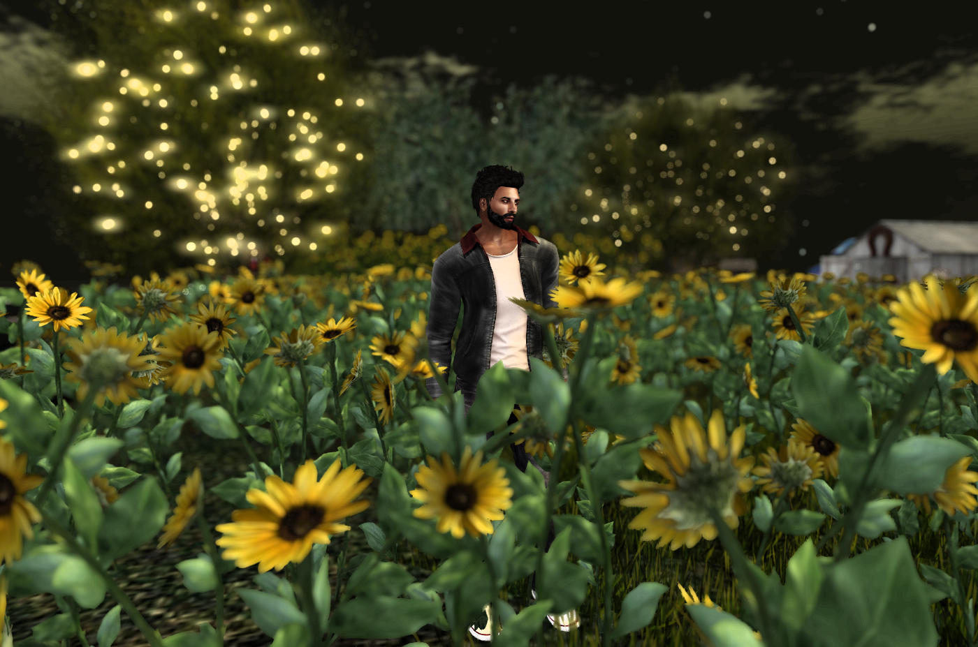 Ricco surrounded by sunflowers