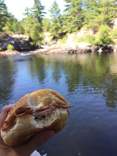 July 24 #dailylunches - a picnic at High Falls in Algonquin Park