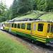 Train to Wengen (Kerrie Porteous)