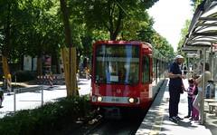 Cologne tram.