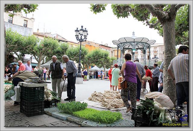 Feria de los ajos en Briviesca (7)