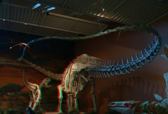 Albuquerue Natural History Museum in Anaglyph 3d