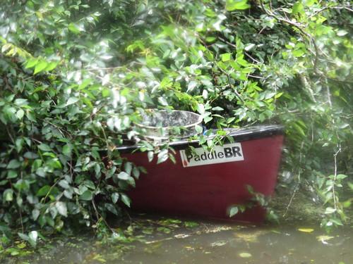 Bush canoe.