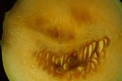 vegetable, honeydew, yellow, macro photography, fruit, food, close-up, muskmelon, melon, cucurbita,