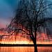 Potomac sunset by Der Berzerker