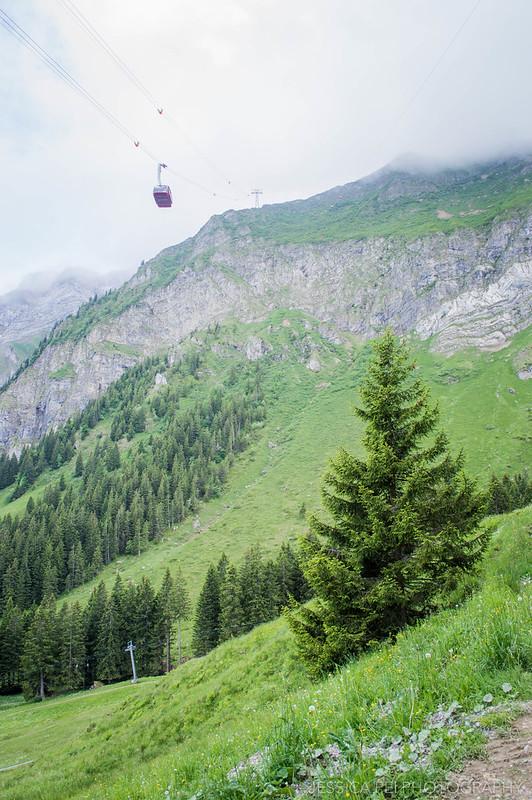 Mount Pilatus Toboggan Ride