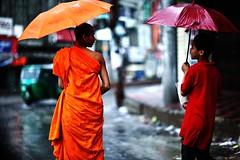 Mocking the Monk