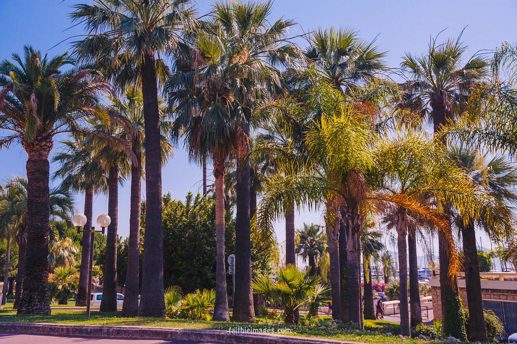 Beautiful city parks