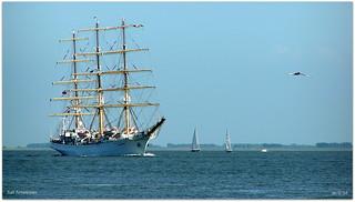 """Sail Antwerpen 044a """"Dar Młodzieży"""""""