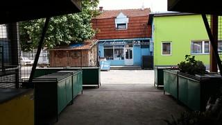 2014-07-10_141722  Zeleni Pijac, Leskovac