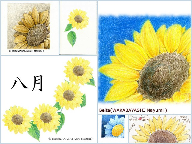 sunflower_01