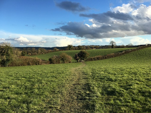 The Meon Valley near Exton