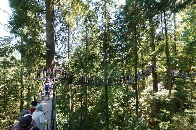 日, 2015-07-19 17:26 - Capilano Suspension Bridge Park