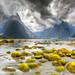 Miford Sound by Loïc Lagarde