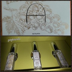 şarapdan parfüm Kayra Allure serisi parfümleri