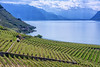 Geneva lake by mirsavio