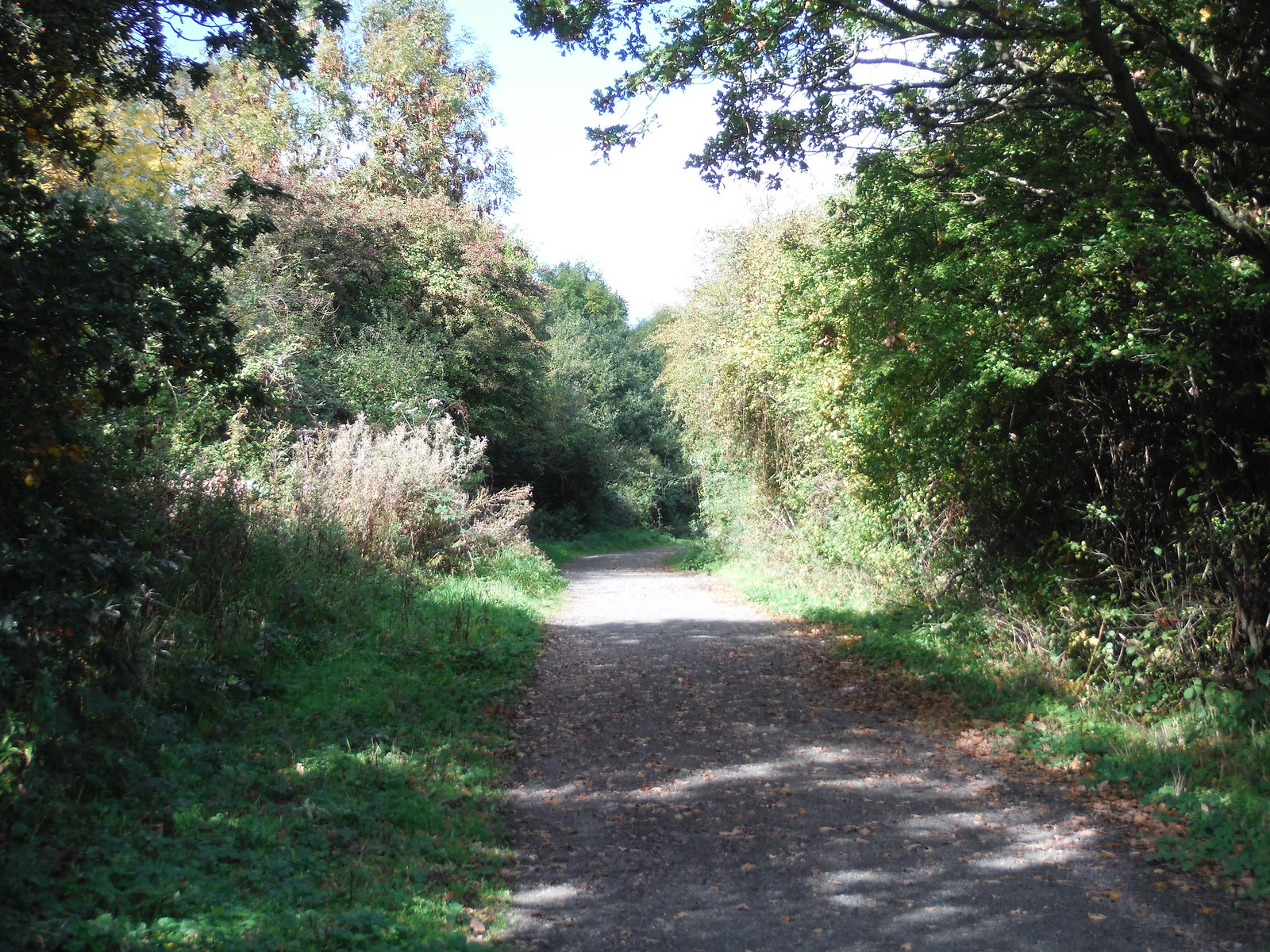 National Cycle Network, joint foot-/cyclepath SWC Walk 114 Laindon Circular