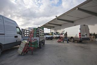 Conversano- rapinatori armati assaltano Fruttaviva